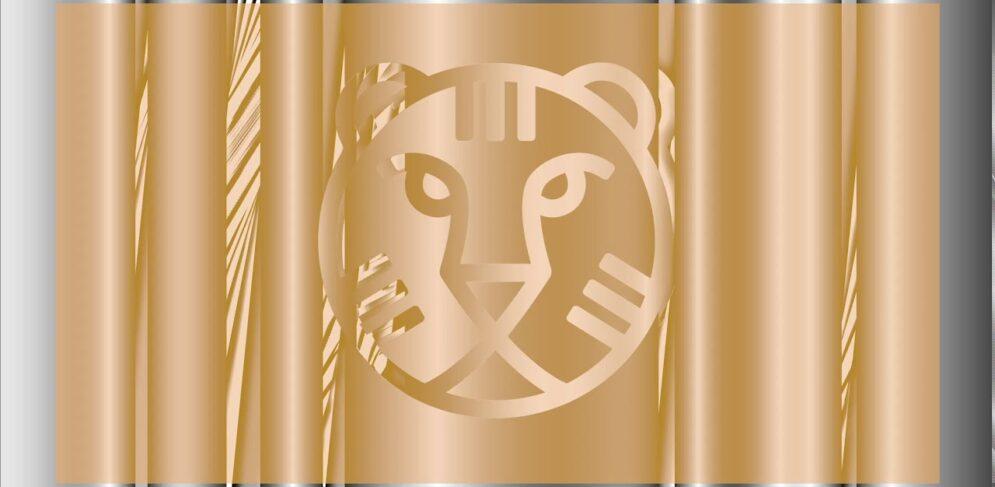 Dit zijn de winnaars van de Ammodo Tiger Short Competition 2021